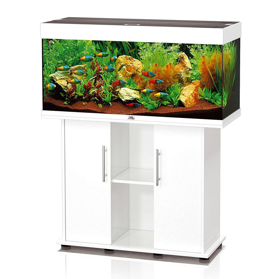 Aquarium unterschrank mit ytong mittelgro es aquarium for Aquarium unterschrank bauen