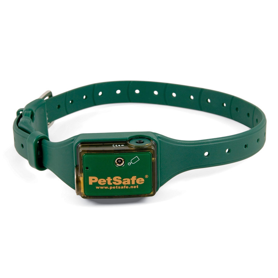 Antibell-Halsband für Hunde