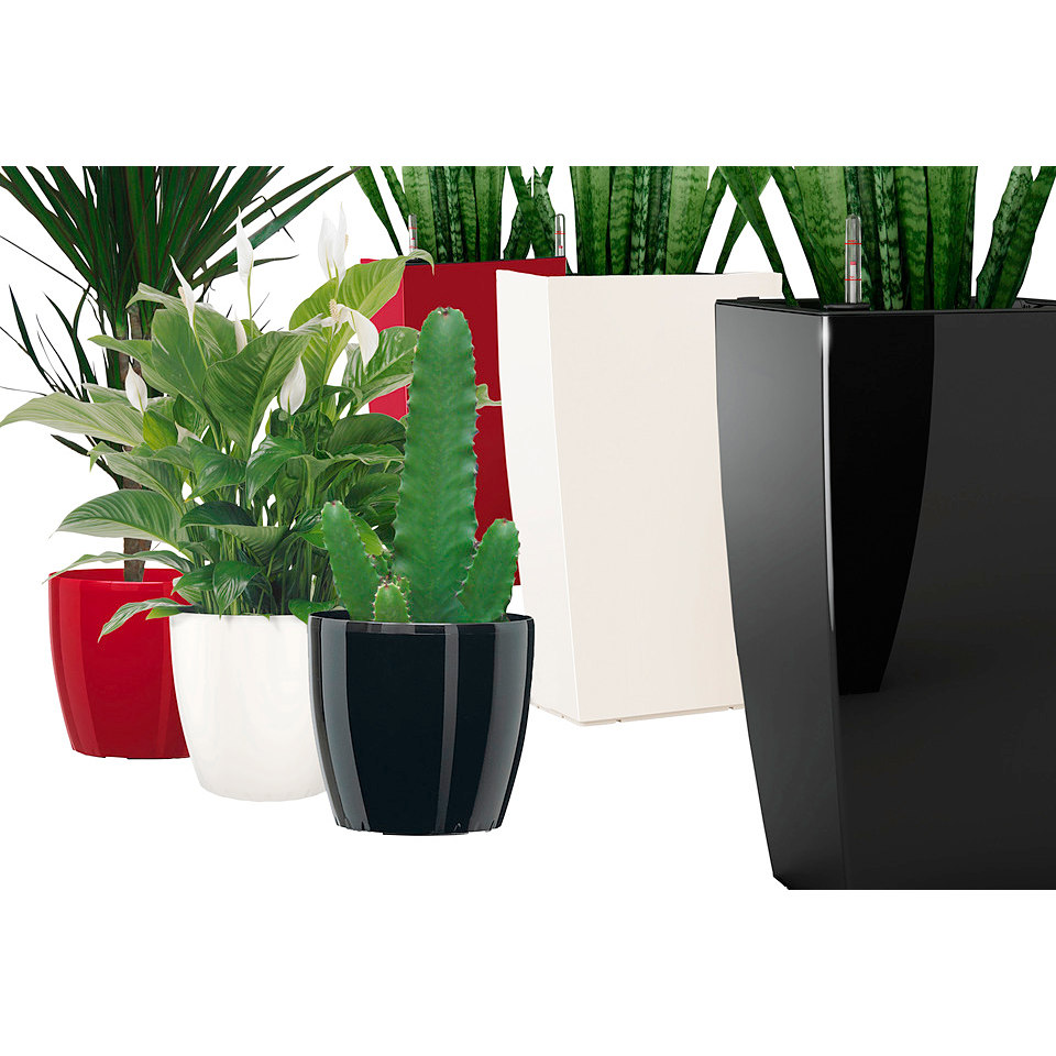 Blumenkübel »MyBox Casa Brilliant« in weiß