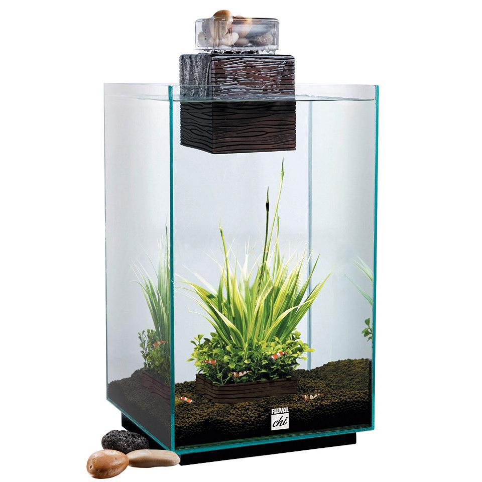 �CHI - Die Energie� Aquarium
