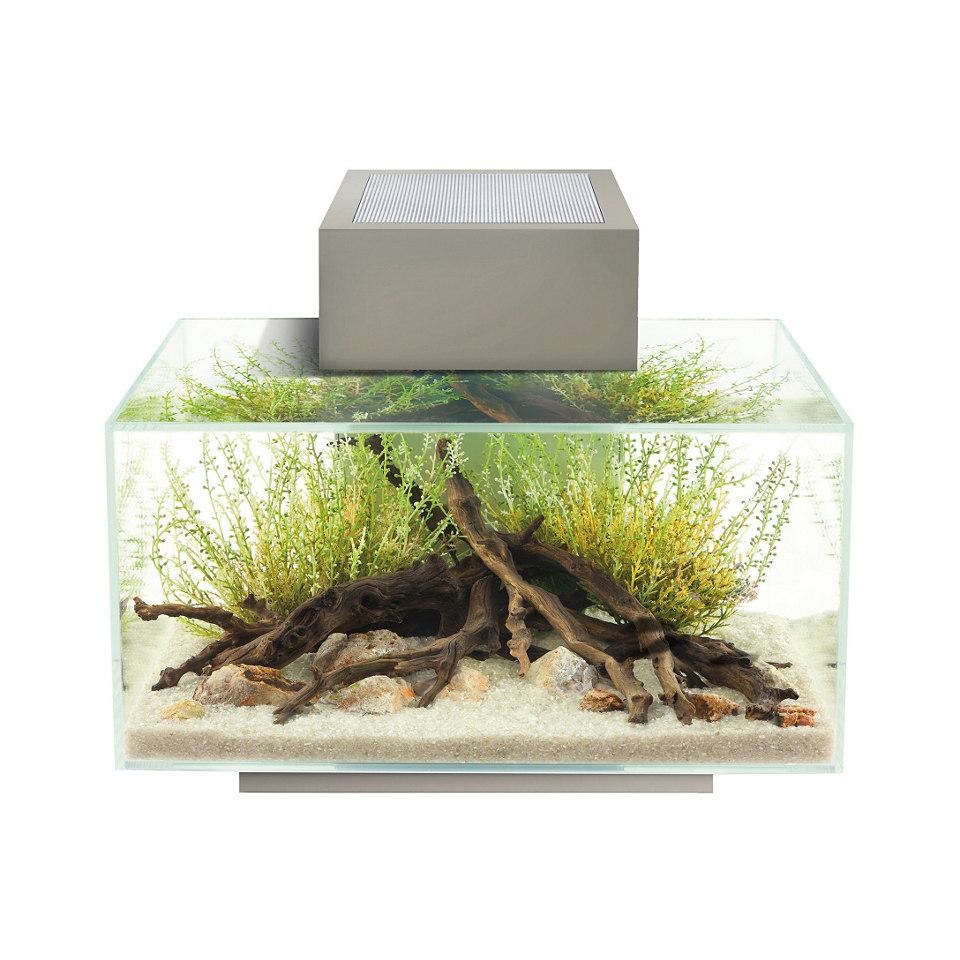 »Edge I« Aquarium, zinnfarben
