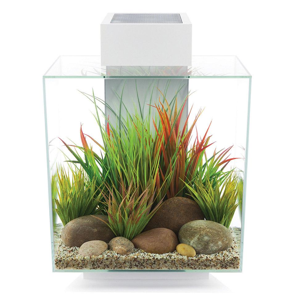 »Edge II« Aquarium, weiß