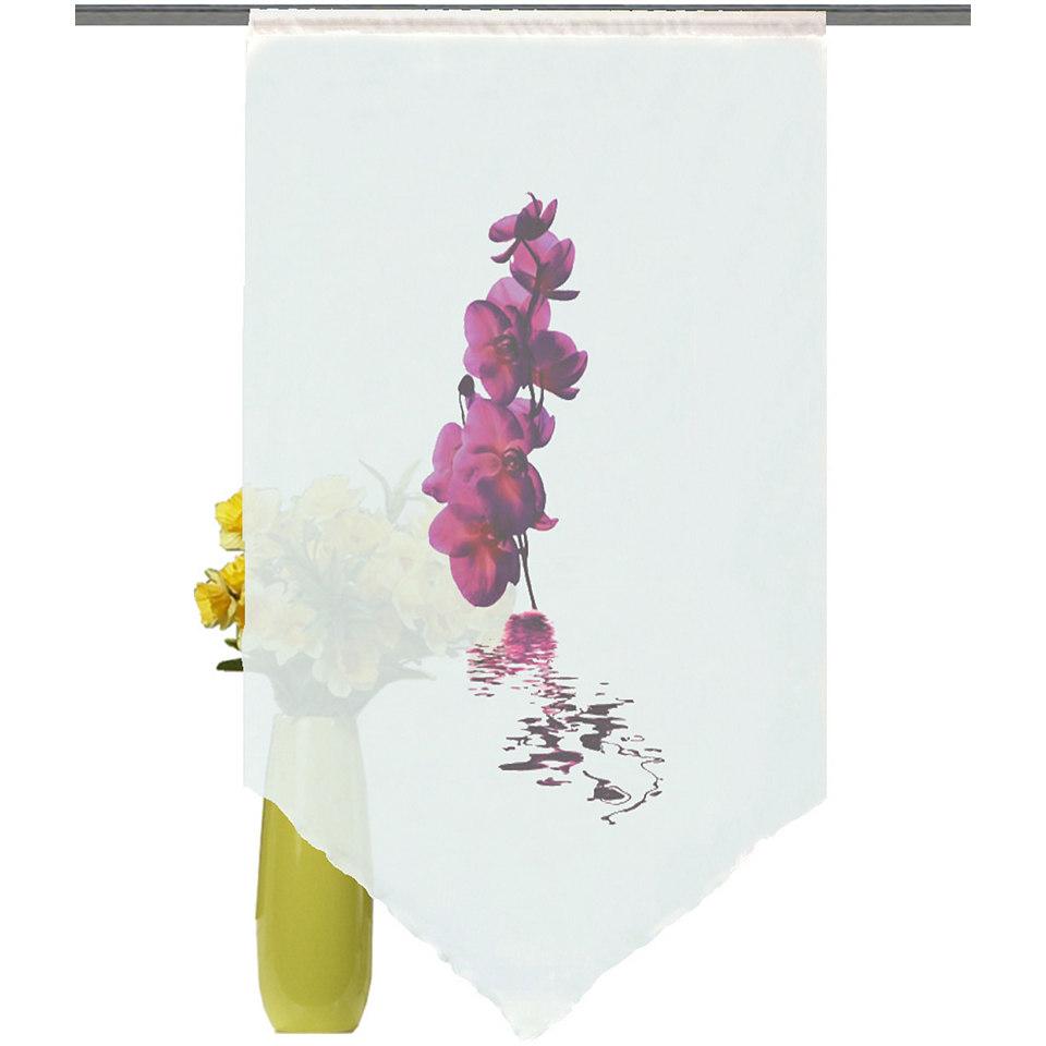 Fensterbehang, Home Wohnideen, �Orchidee� (1 St�ck)