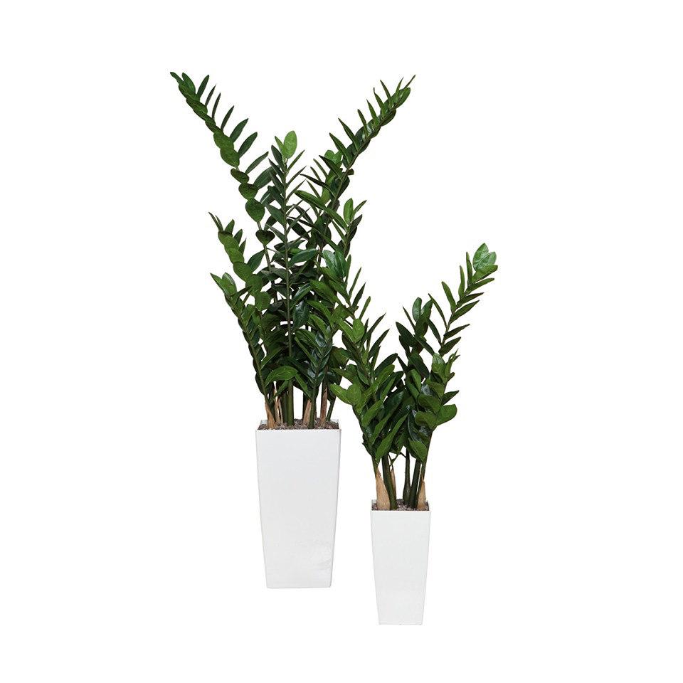 Kunstpflanze Zamifolia