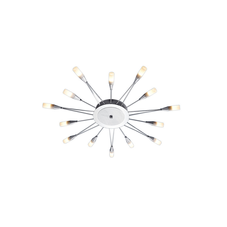 LED-Deckenlampe (14flg.)