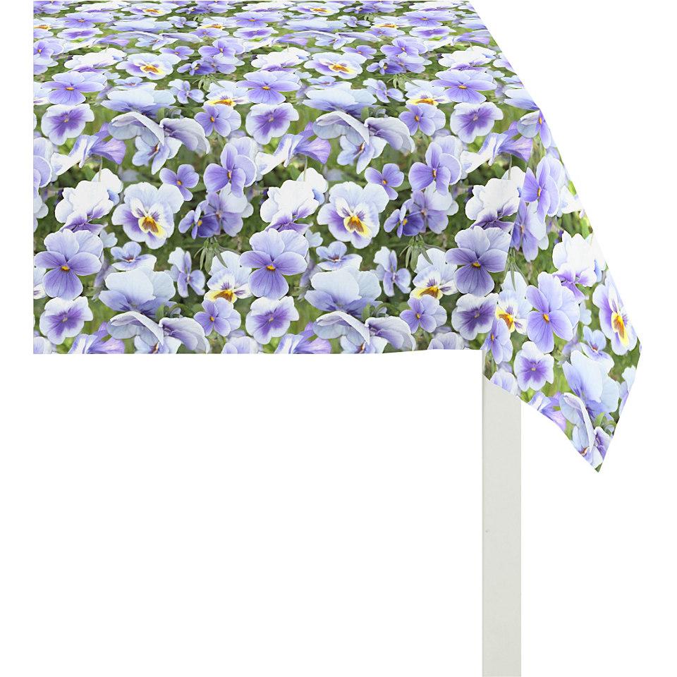 Mitteldecke, Apelt, »4037- Blütendruck«