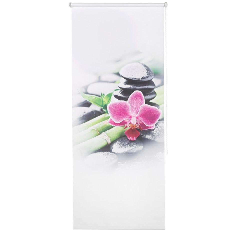 Seitenzugrollo, my home, �Orchidee�, im Fixma�, ohne Bohren, Lichtschutz (1 Stck.)