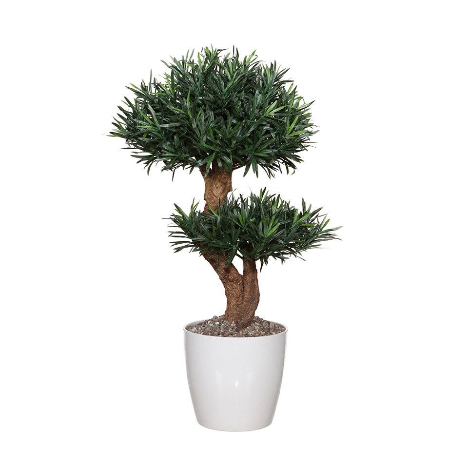 Set: Kunstpflanze Podocarpusbaum