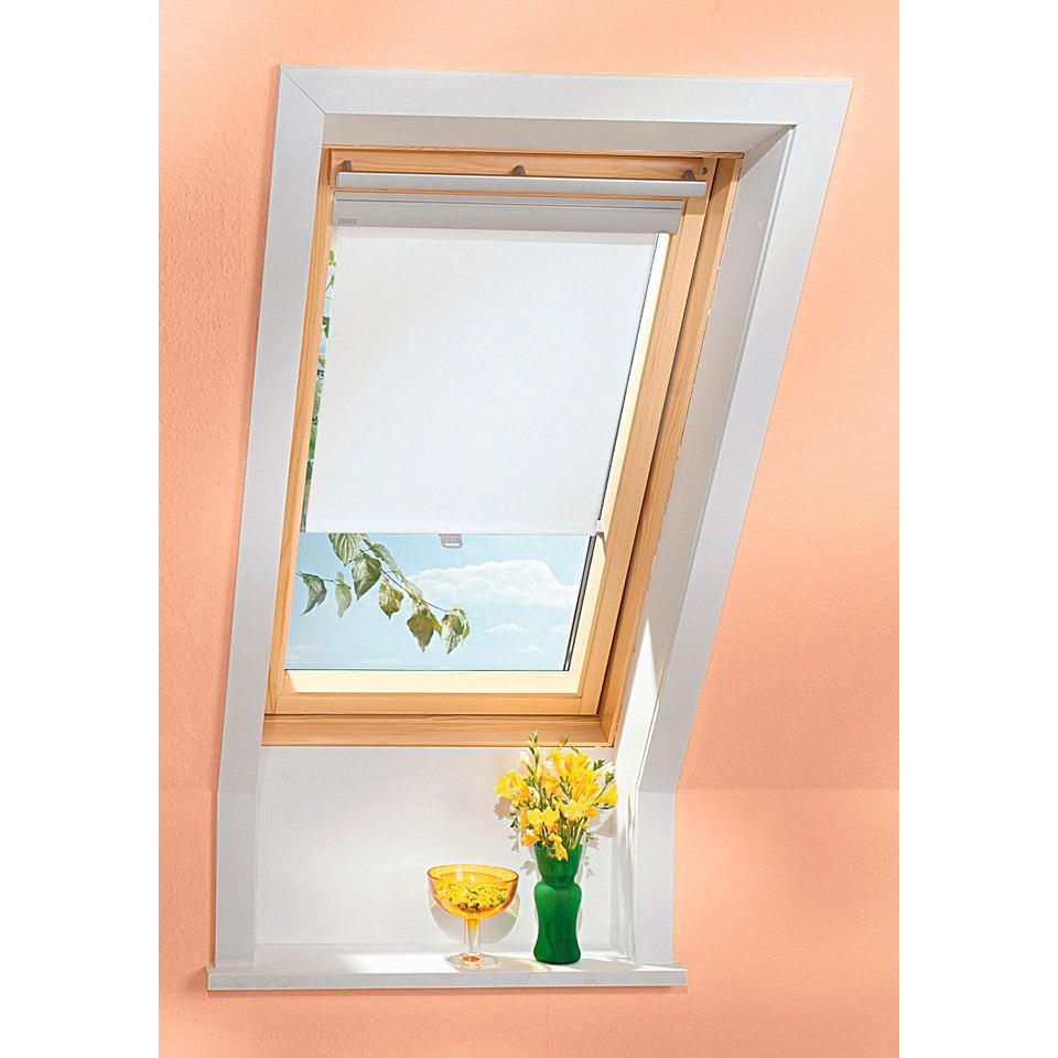 Sichtschutzrollo in beige