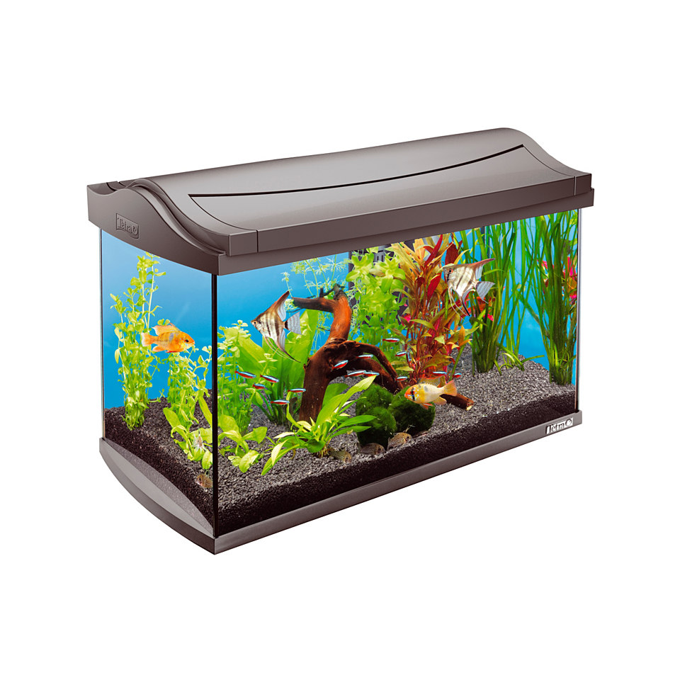 Tropical Aquarium �AquaArt�